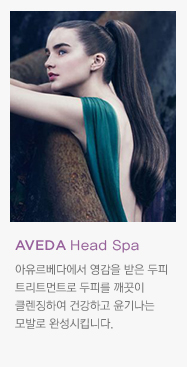 AVEDA Botanical Spa
